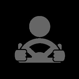 <ul> <li>1 xSingle Driving Lesson (60min)</li> </ul>