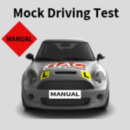 Manual Mock Test