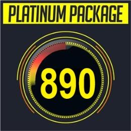 Platinum - 10 Lesson Credits & Test
