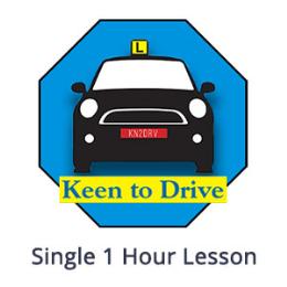 Single 1 Hour Auto Lesson