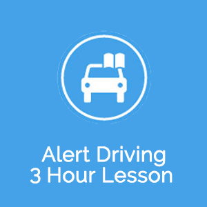 3.0 Hour Automatic Lesson at Gonow Driving School