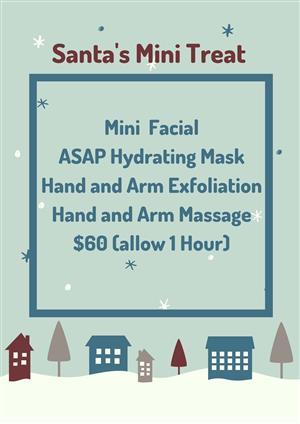 Santa's Mini Treat at Bay Harmony Skin & Body