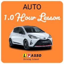 1.0 Hour Lesson  (auto)