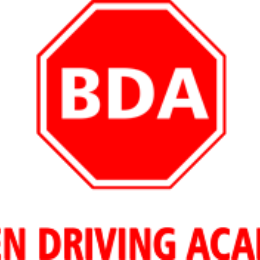 DOL OFFICIAL DRIVING SKILL TEST