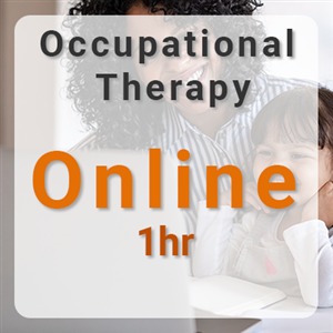 Online Occupational Therapy - 1hr at Inspire Therapy