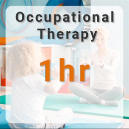 Occupational Therapy -  1hr