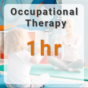 Occupational Therapy -  1hr at Inspire Therapy