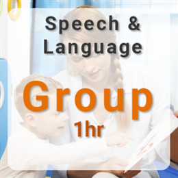 Group Speech & Language Therapy - 1hr