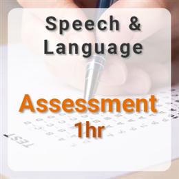 Speech & Language Assessment - 1hr