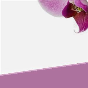 1 Hour Massage With Teia at Sense of Balance Massage Therapy & Reflexology