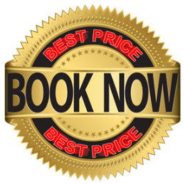 10 Hours AUTO Lessons SAVE $115