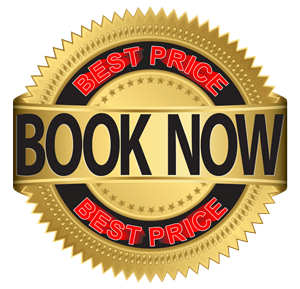 10 Hours AUTO Lessons SAVE $115 at Briswide Driving School